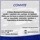 Para discutir normas de convívio na Av. Porto Alegre, Câmara realizará audiência pública nesta terça-feira (22)